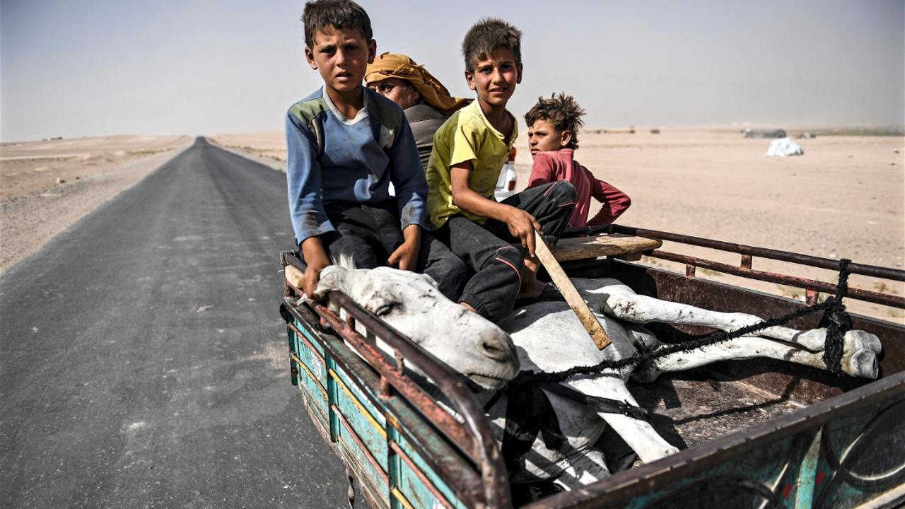 ООН призывает к паузе, чтобы люди смогли бежать из сирийской Ракки