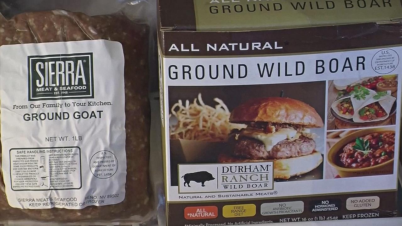 Органическая еда для питомцев – новый тренд