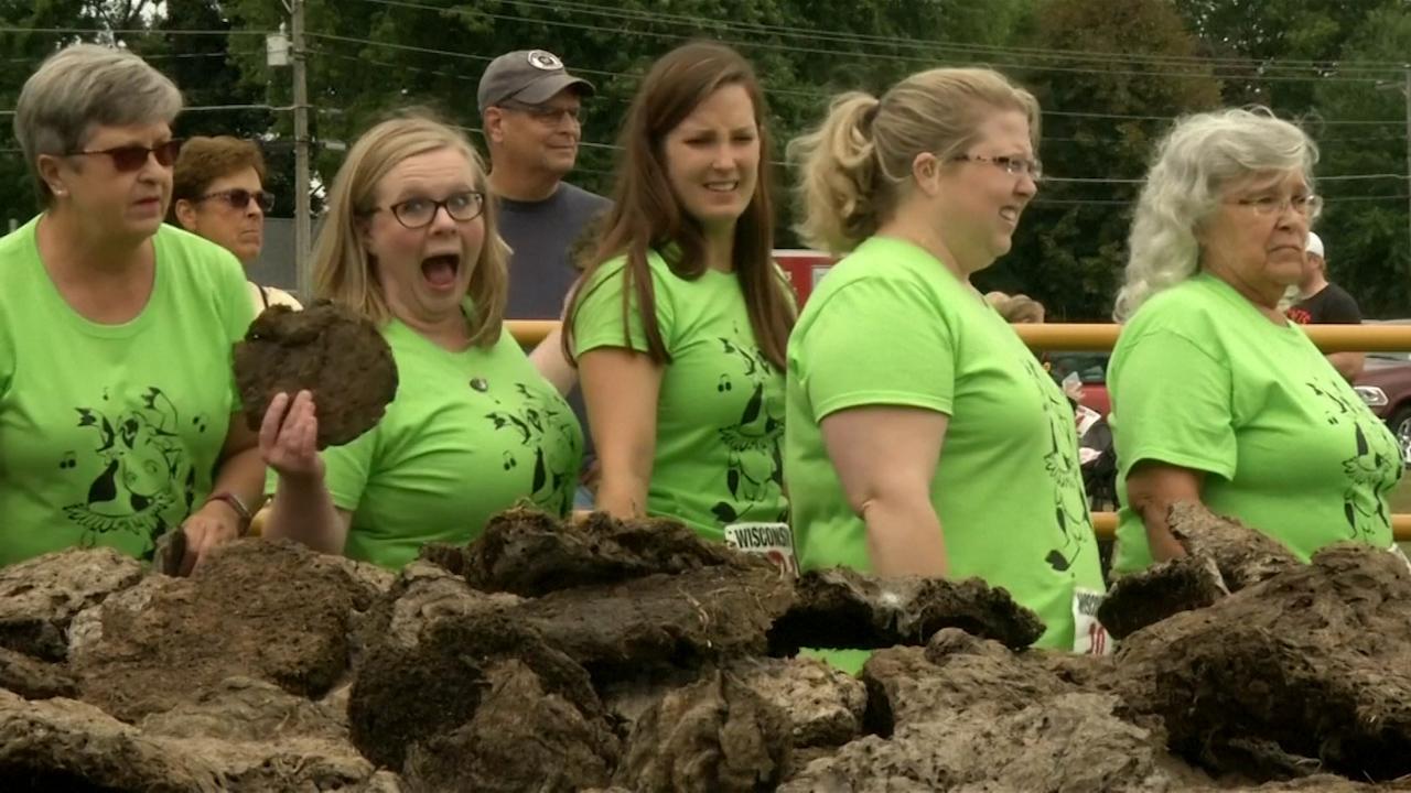 Конкурс по метанию коровьих лепёшек прошёл в США