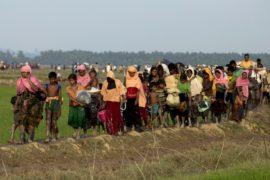 123 тысячи рохинджа бежали в Бангладеш: ООН призывает остановить насилие
