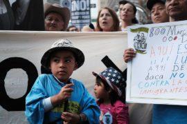 Дональд Трамп отменил программу защиты детей нелегалов