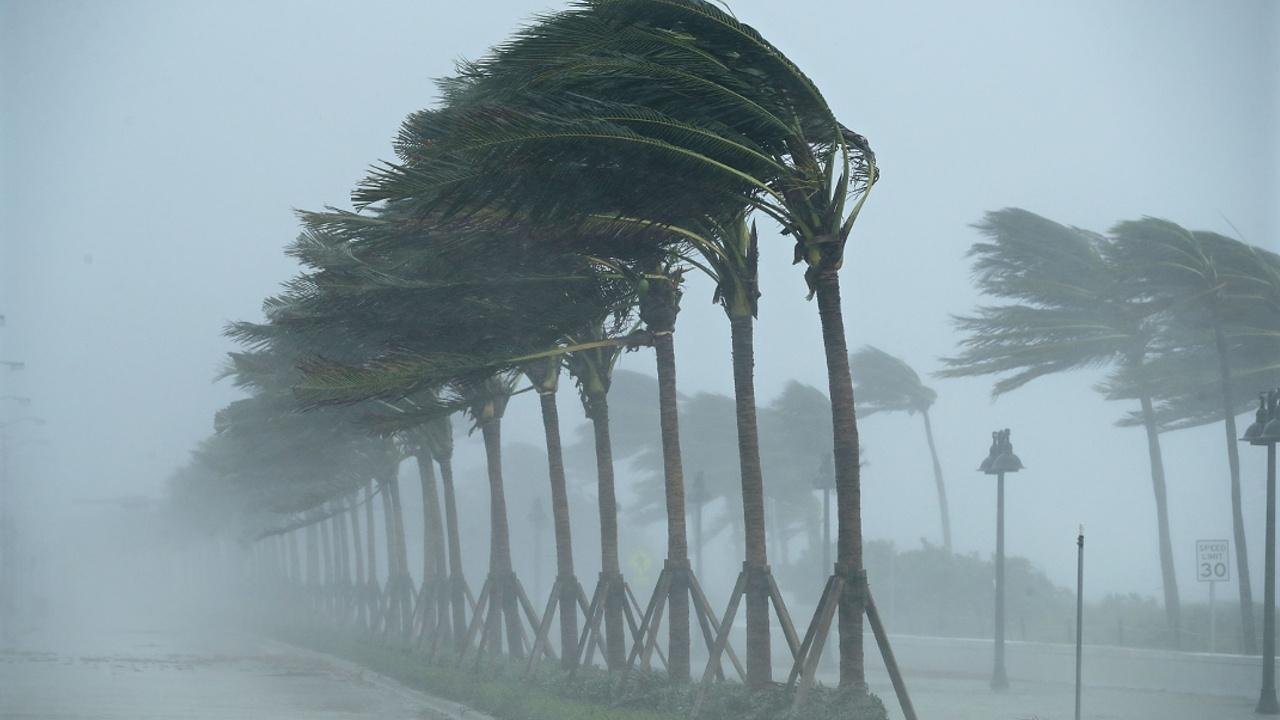«Ирма» пришла во Флориду, есть жертвы