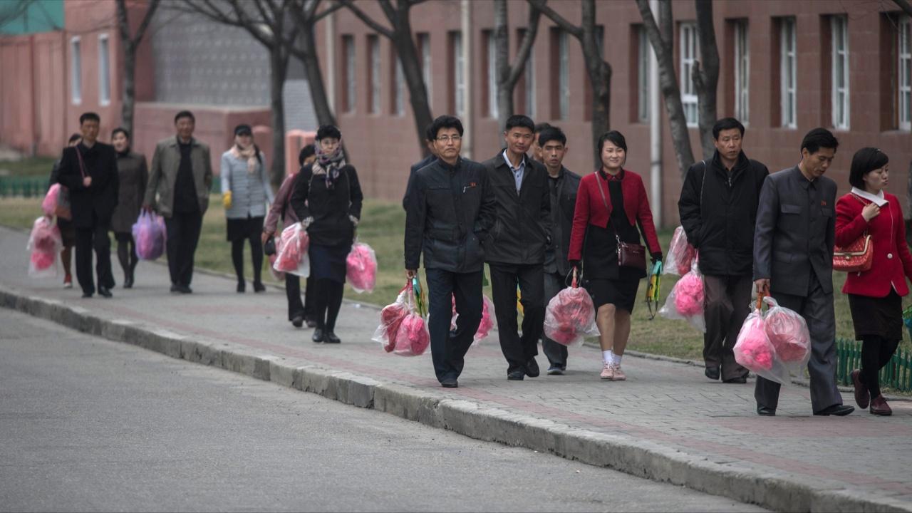 Япония: ряд стран согласился не выдавать рабочие визы северокорейцам