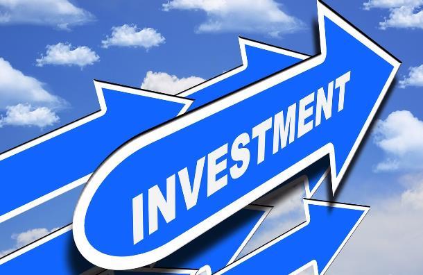 Как выбрать хайп-проект для инвестирования