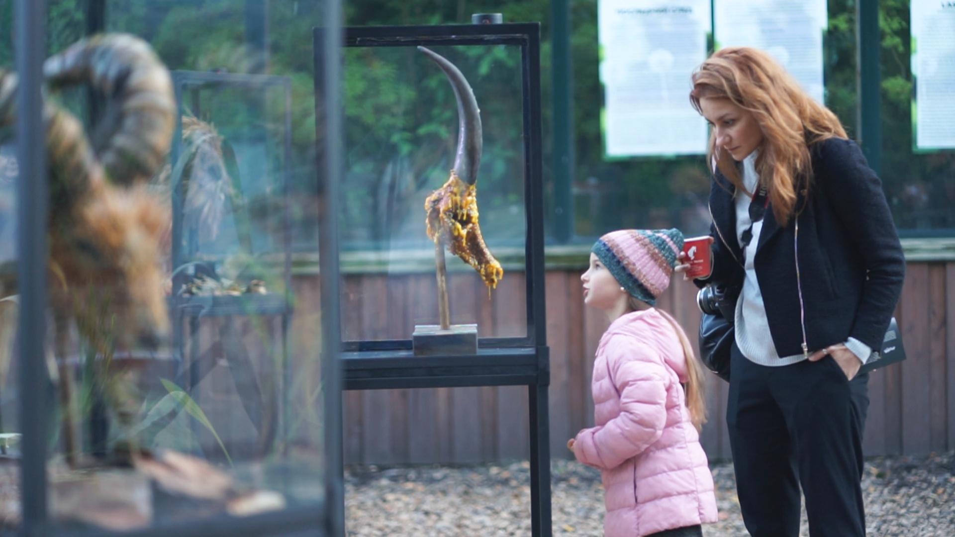 Скульптуры дикой фауны из Красной книги представили в Москве