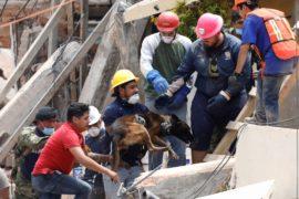 В Мехико ищут тела ещё шестерых пропавших без вести