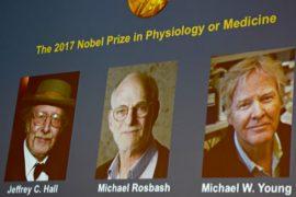 Нобелевскую премию по медицине дали за изучение «биологических часов» тела