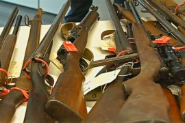 Оружейная амнистия в Австралии: сдали 51 тысячу единиц