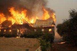Пожары в Калифорнии: 10 погибших, 1500 сгоревших домов
