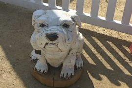 Австралийка вырезает фигуры животных бензопилой