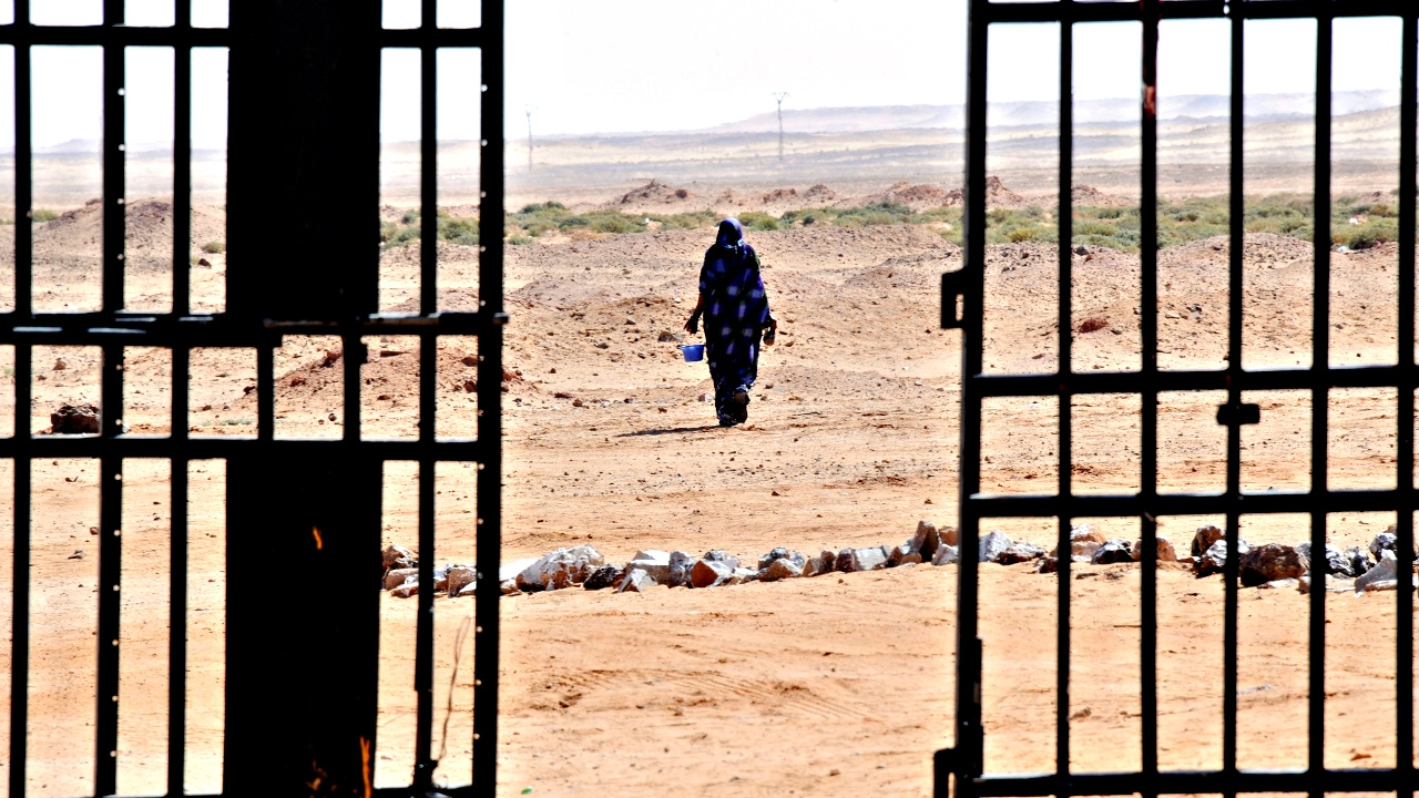 МОМ: в Сахаре гибнет больше мигрантов, чем в Средиземном море