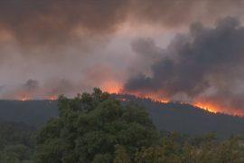 Число жертв лесных пожаров в Португалии превысило 30