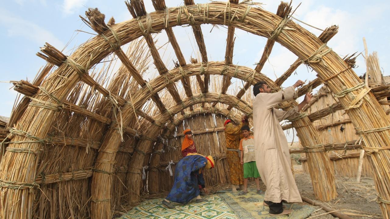 Болотные арабы возрождают свои традиции