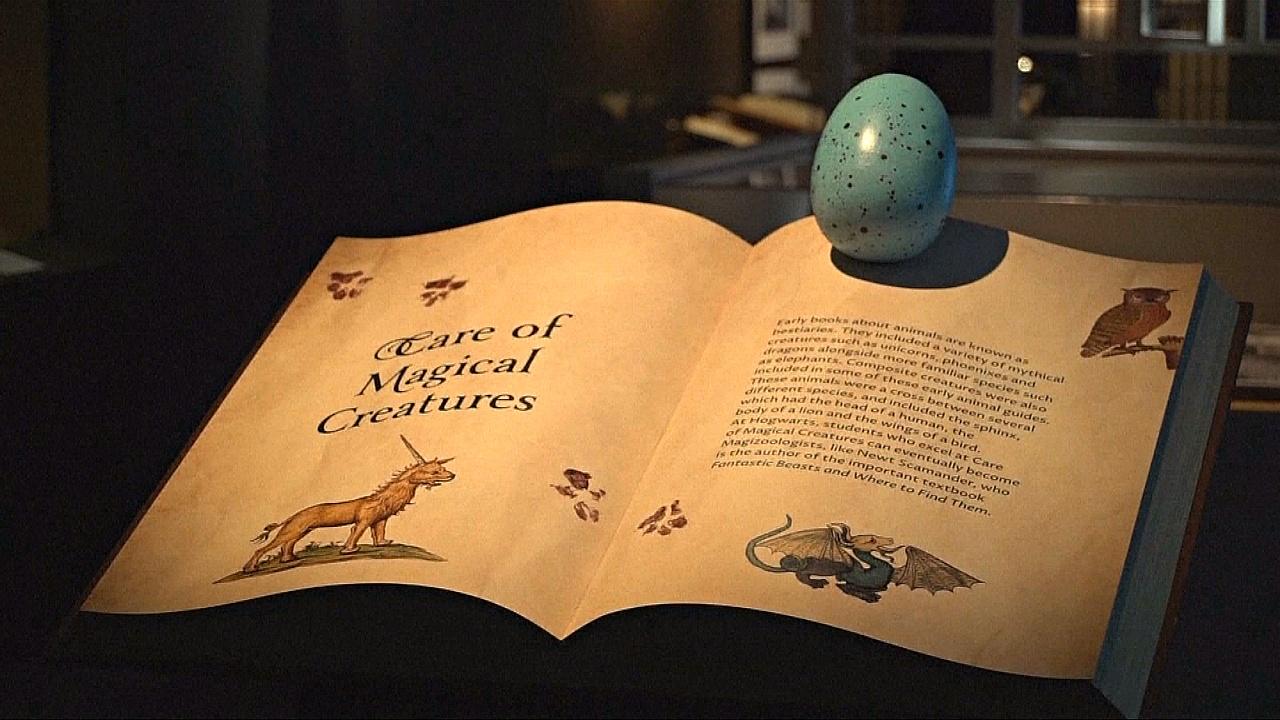 Выставка о Гарри Поттере объединила магию с историей