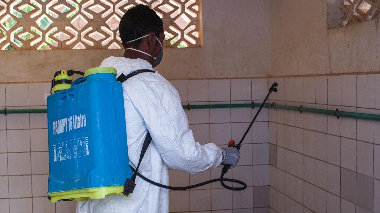 Вспышка чумы на Мадагаскаре: более 90 умерших