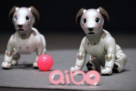 Sony представила робота-собаку «Айбо» нового поколения