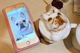 3D-картинки на кофейной пене предлагает кафе в Тайване
