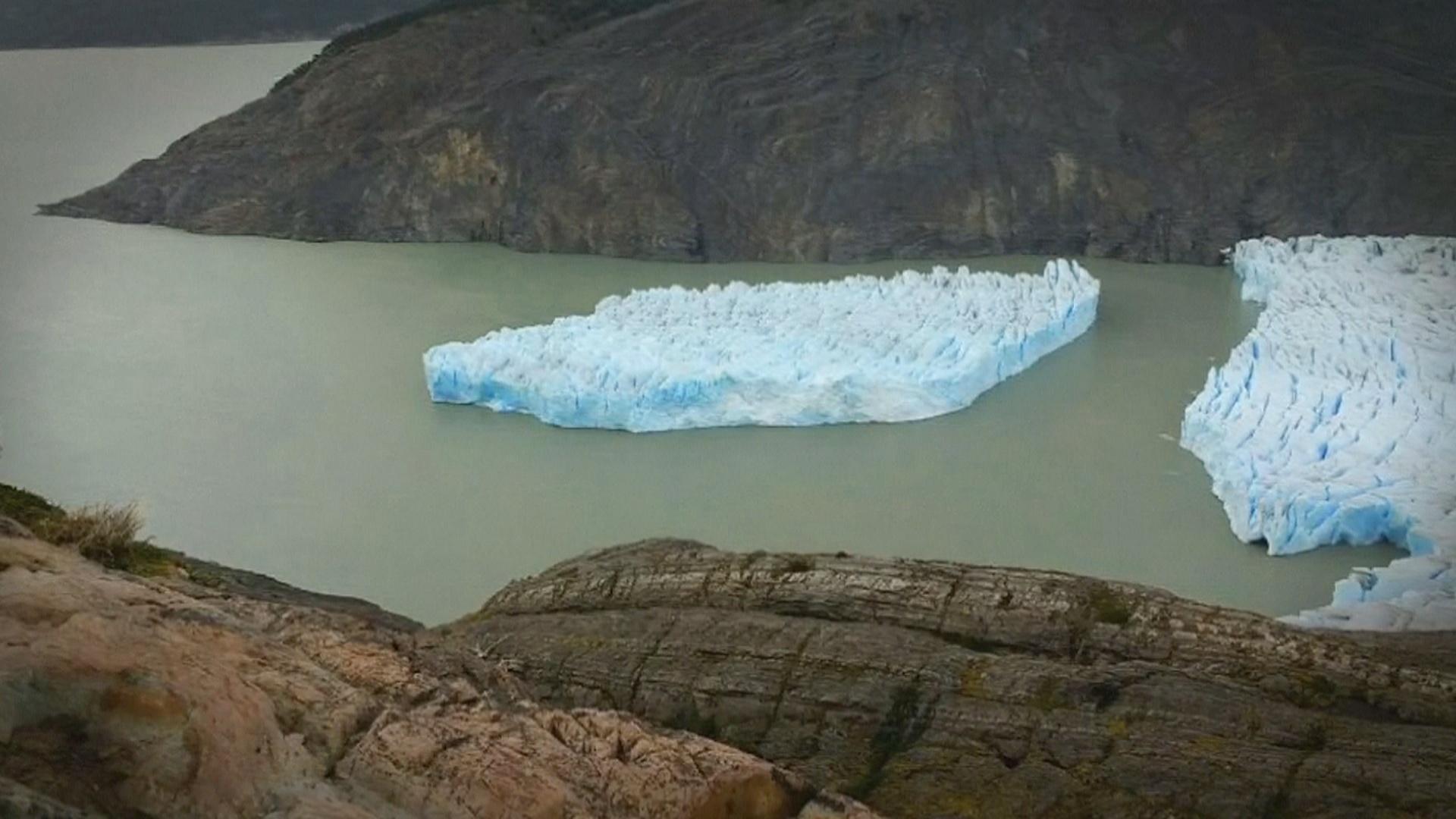 Огромный айсберг откололся от ледника Грей на юге Чили