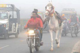 Ядовитый смог вернулся в Нью-Дели