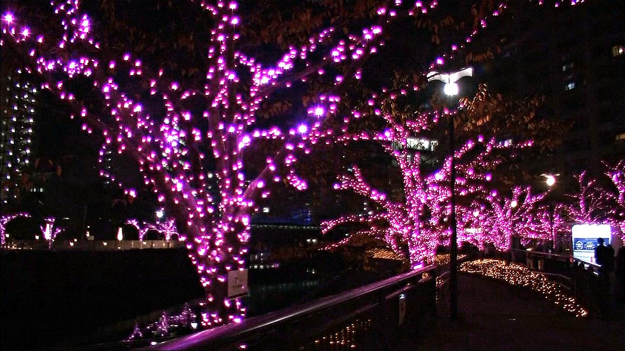 Рождественская иллюминация в Токио загорелась благодаря переработанному маслу
