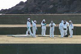 Северокорейские рыбаки обворовали японский необитаемый остров