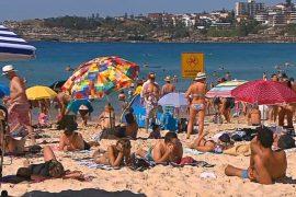 В Сиднее – самая жаркая погода за 80 лет