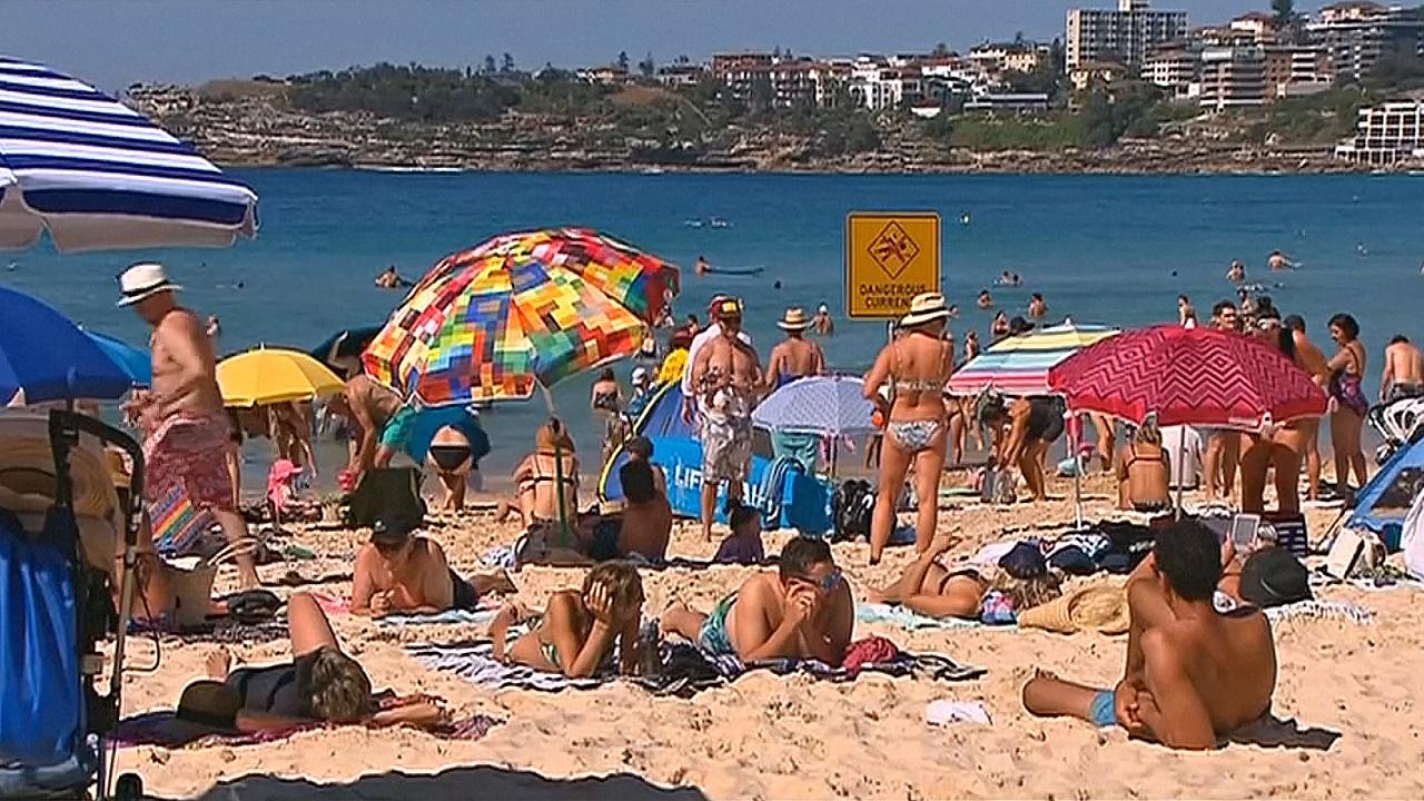 В Сиднее — самая жаркая погода за 80 лет