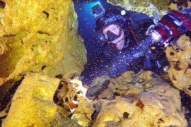 Самую длинную в мире затопленную пещеру нашли в Мексике