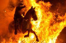 Зачем испанские наездники прыгают на лошадях через костёр?