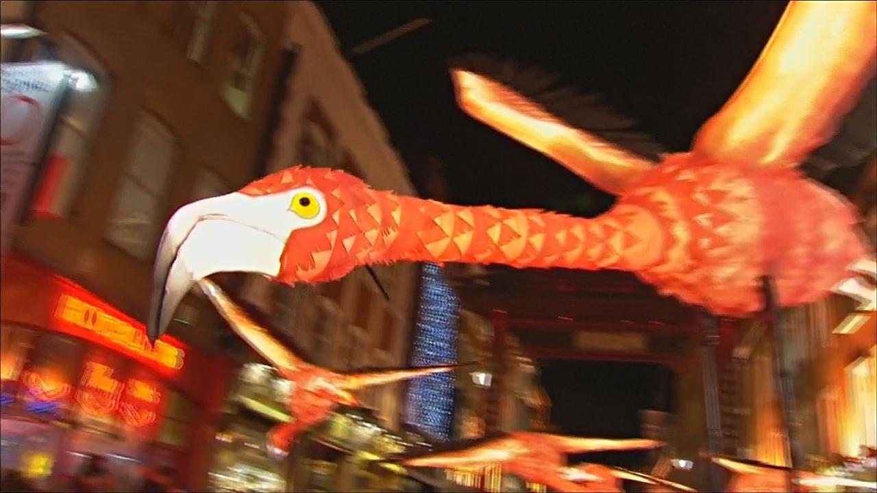 Светящиеся фламинго и цветы на арт-фестивале в Лондоне