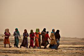 Турция готовится к возможному наплыву беженцев из Идлиба