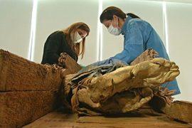 В Перу нашли мумии китайских иммигрантов XIX века