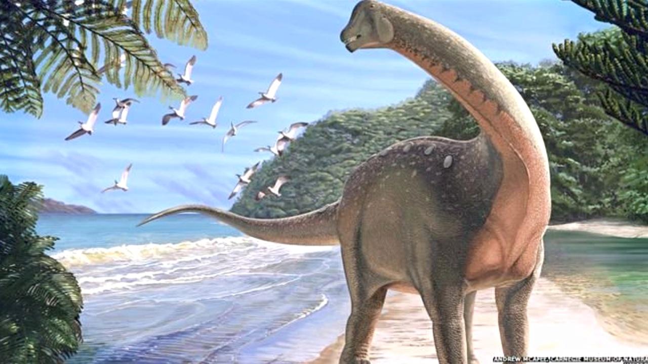 Учёные собирают скелет динозавра, жившего в Африке в меловой период