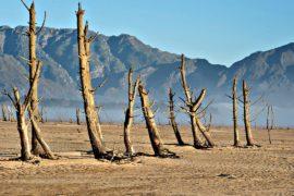 «День зеро»: в мае жители Кейптауна могут остаться без воды