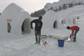 Беженцы бескорыстно помогли итальянцу построить деревню иглу