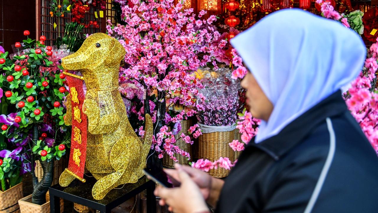 Почему в Малайзии решили обойтись без символа Китайского нового года