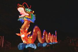 Светящиеся панды, львы и дракон украсили Эдинбургский зоопарк