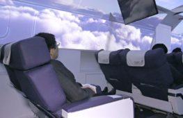 Ресторан-самолёт: японцы полюбили виртуальные туры по миру