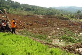 Оползень в Индонезии: не менее 5 погибших