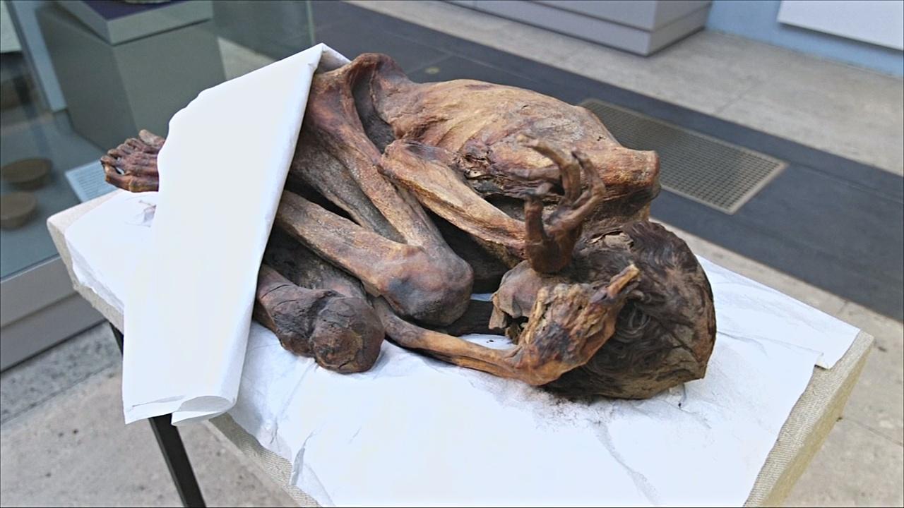 5000-летние татуировки нашли на коже египетских мумий