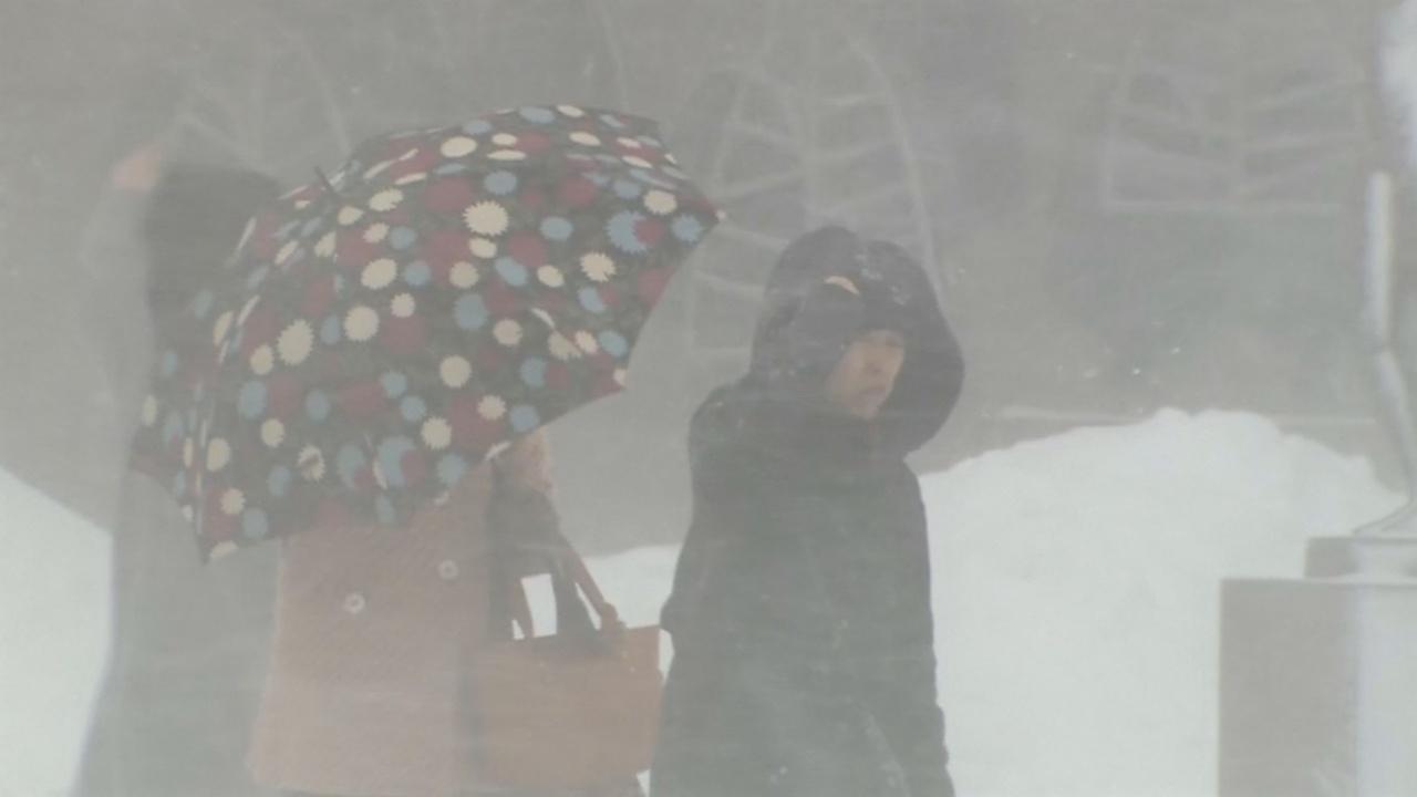 На Японию обрушился снегопад, какого не видели много лет