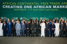 44 африканские страны договорились о зоне свободной торговли