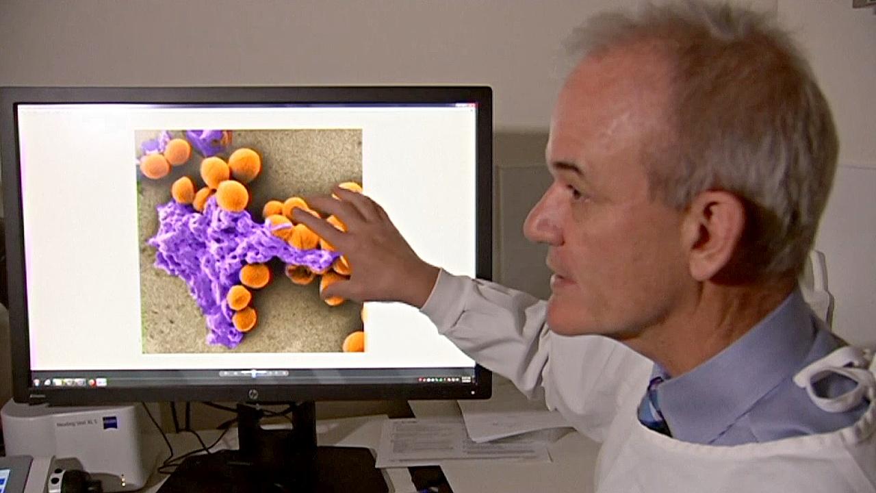 Лекарство от «супербактерий»: исследователи стоят на пороге нового открытия