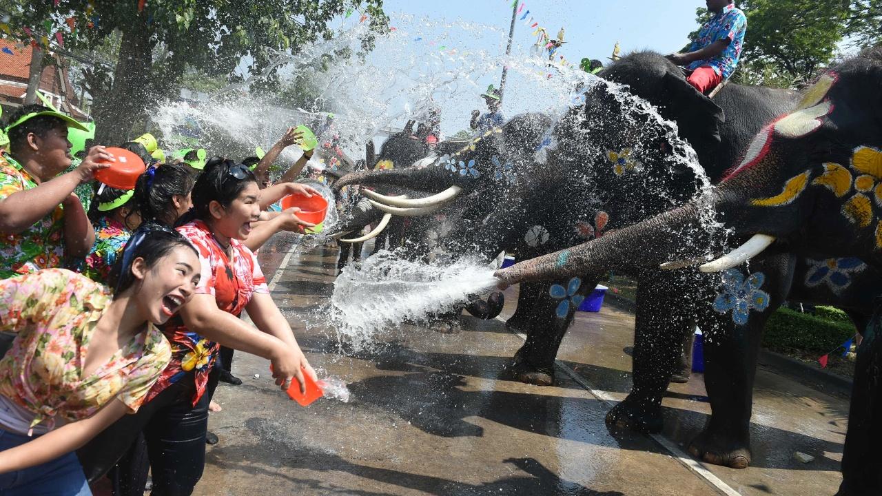 Слоны обливают прохожих и туристов на фестивале Сонгкран в Таиланде