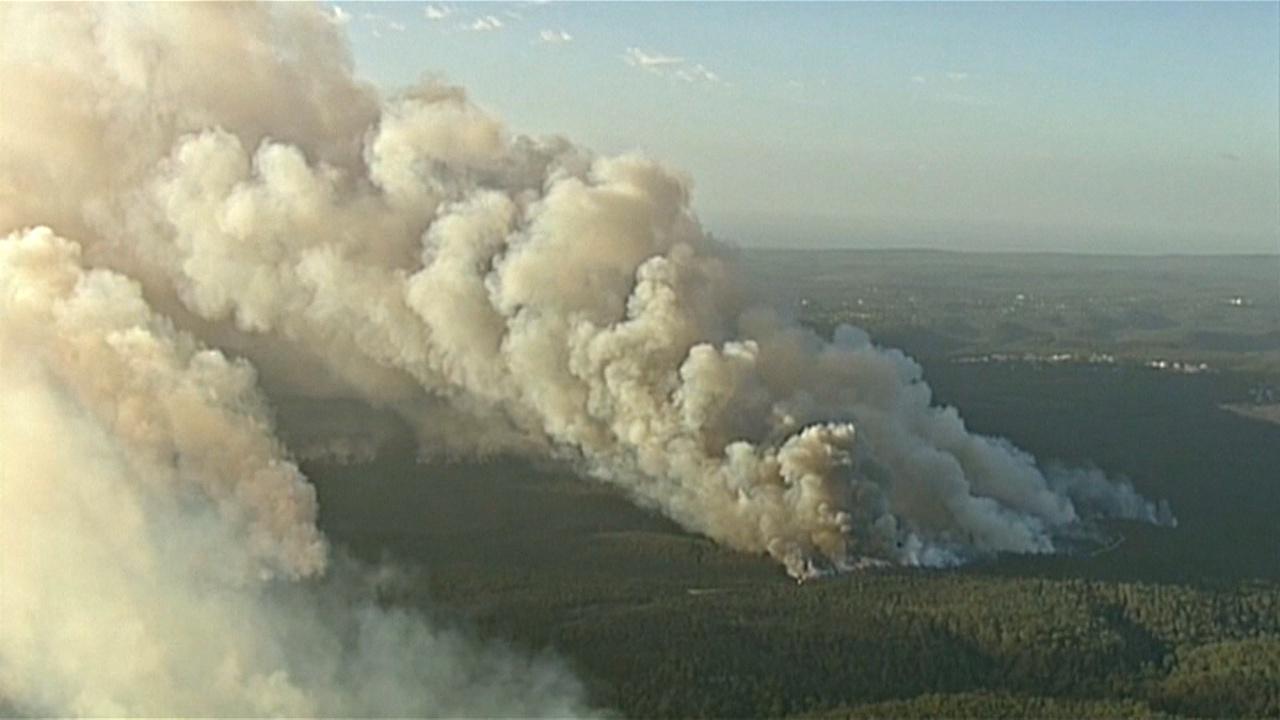 В Сиднее ввели режим ЧП из-за лесных пожаров