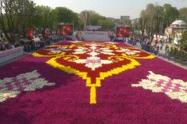 Разноцветный ковёр из тюльпанов раскинулся в центре Стамбула