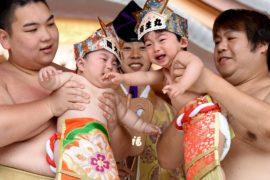 В Токио прошёл весенний фестиваль сумо