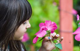 Как эмоции человека влияют на растения?