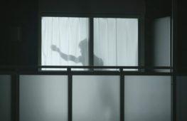 «Мужчины за занавеской» — новые защитники одиноких японок