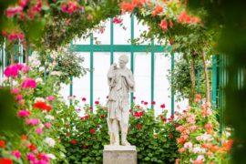 Королевские оранжереи Брюсселя временно открылись для публики